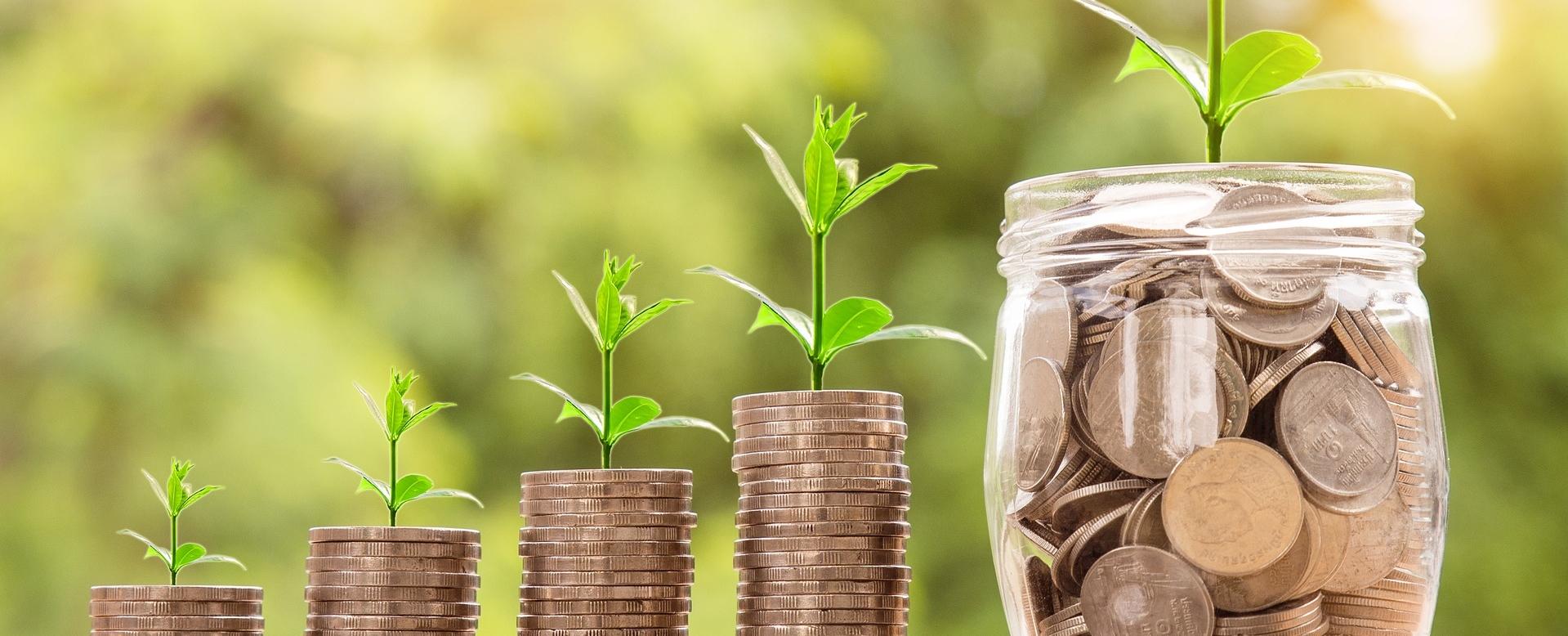 Your eco service benefits