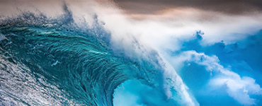 Surfing the Digital Wave to Success