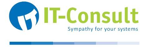 IT-Consult Ralf F. Emons e.K.