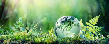 Fit for 55: For the realization of the European Green Deal and the EU 2030 climate targets